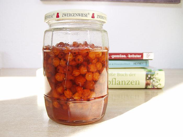 Vogelbeeren in Honig eingekocht