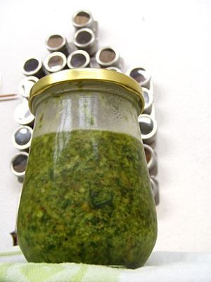 Pesto mit Radieschenblättern